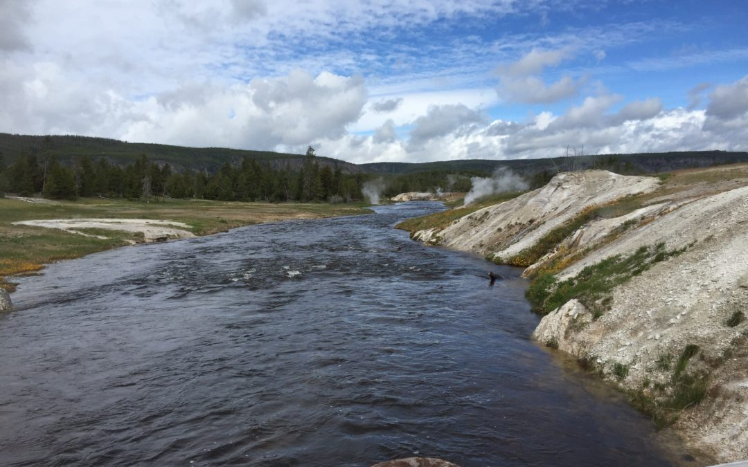 11 Things to Do in Yellowstone National Park This Summer